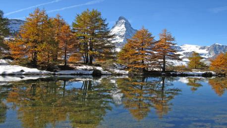 Picos da Suíça